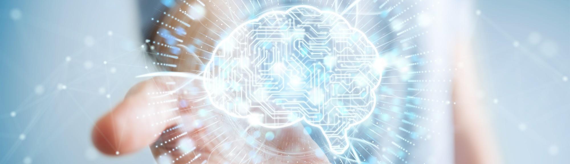 Neurologie Titelbild - Gehirn sinnbildlich für zentrale und periphere Nervenschädigungen